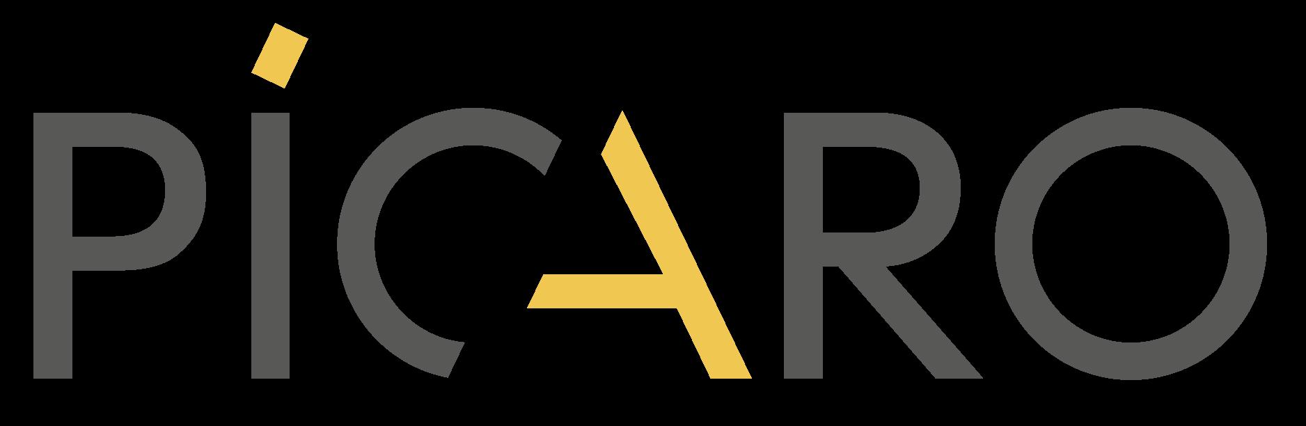 Picaro Design Logo